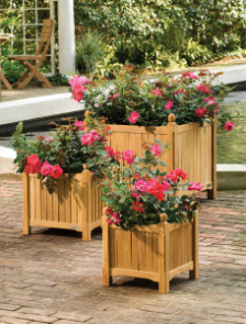 Shorea Planter Box 19 Inch