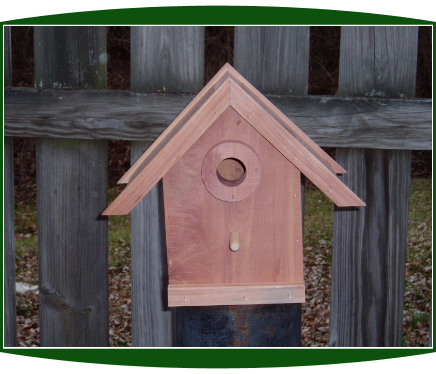 Country Inn Bird House